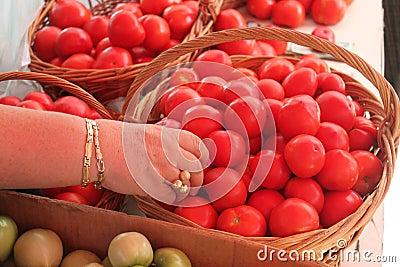 Mano che sceglie i pomodori