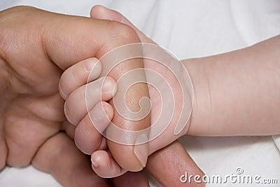 Mano del bebé y brazo del padre