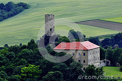 Manor house and castle tower.