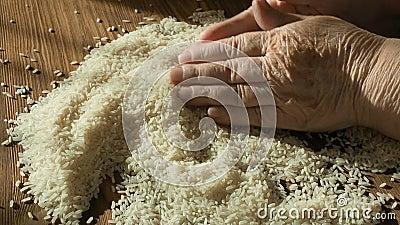mejor arroz para dieta