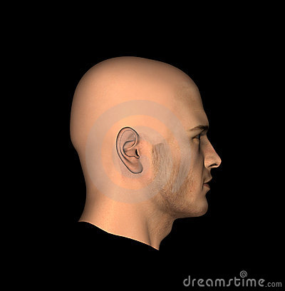 Mans Head 11