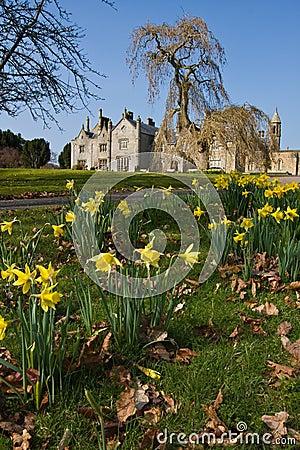 Mansion in an estate