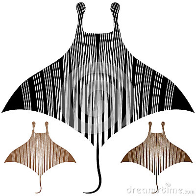 Manta Ray Drawing