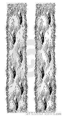 Manteau de fourrure de vecteur de bras