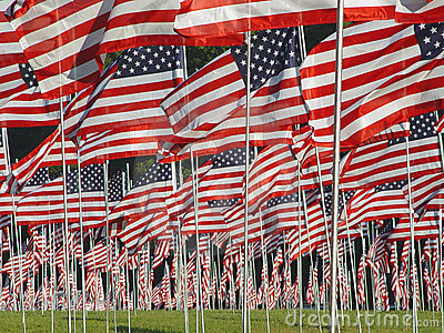 Many American Flags in the Grass