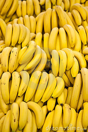 Free Many Bananas Royalty Free Stock Photography - 17529197