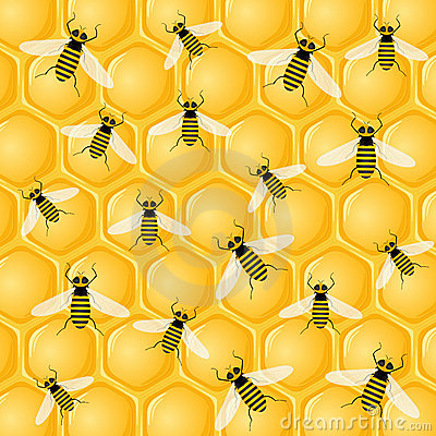 Many bees on honeycomb