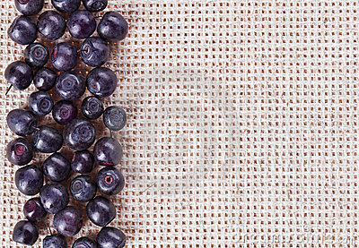 Many bilberry fruits, on gray linen