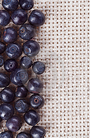 Many bilberry fruits, on gray linen table cloth