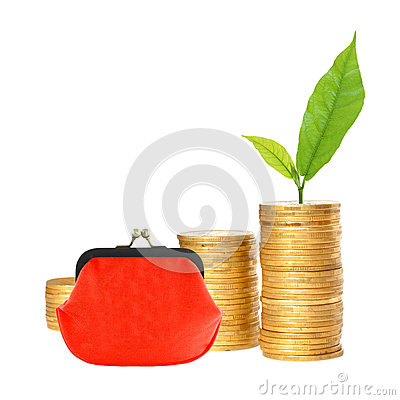 Free Many Columns Of Gold Coins, Red Purse And Green Plant Royalty Free Stock Images - 60380519