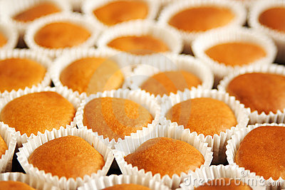 Many cupcakes in white paper