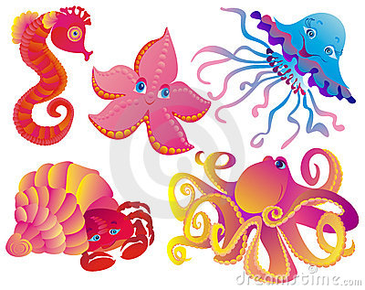 Many different sea mammals