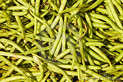 Many green beans