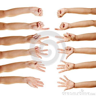 Many hands counting with fingers