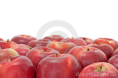 Many red apples on white background