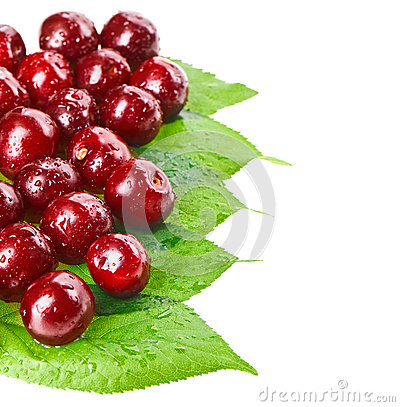 Free Many Red Wet Cherry Fruits Stock Image - 28644051