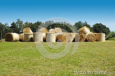 Many straw bales