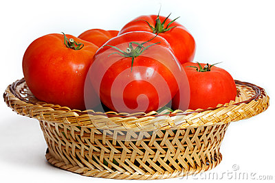 Many tomatoes in a basket