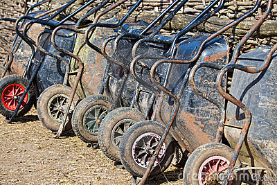 Many wheelbarrows on the farm