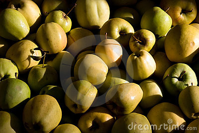 Many yellow and green apples