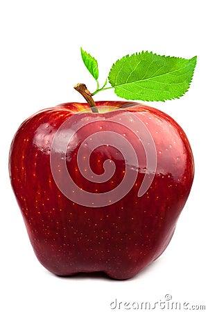 Manzana rojo oscuro con las hojas