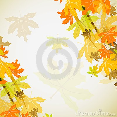Maple autumn background,