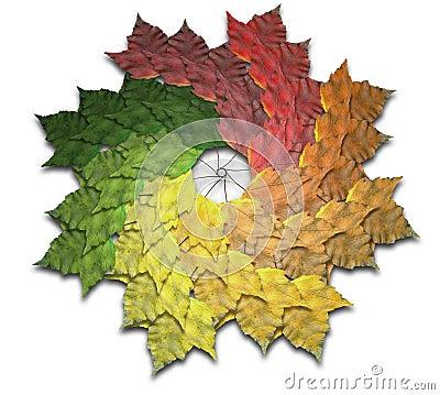 Maple Leaf Autumn Spiralling Spectrum