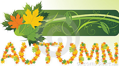 Maple leaves. Abstract autumn banner