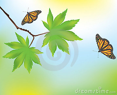 Maple leaves and butterflies