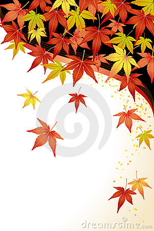 Maple Leaves: Momiji