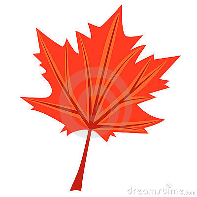 Maple s leaf