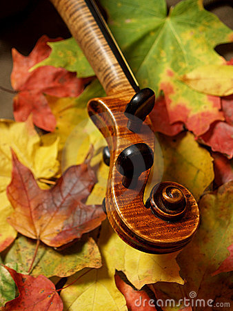 Maple Violin Scroll & Maple Leaves