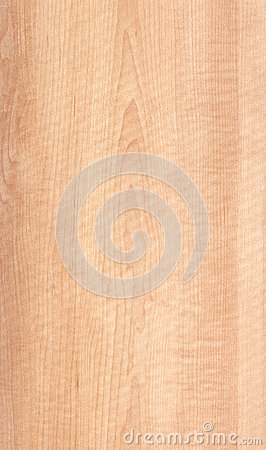 Free Maple Wood Texture Royalty Free Stock Photography - 46216327