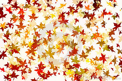 Mapple Leafs Autumn grunge Background