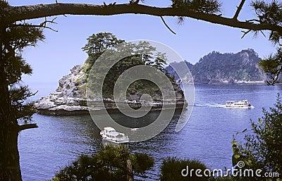 Mar japonés