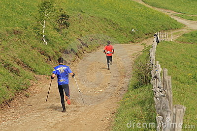 Marathon runners in the mountains Editorial Image