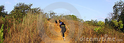 Marathon trail runners Editorial Stock Image