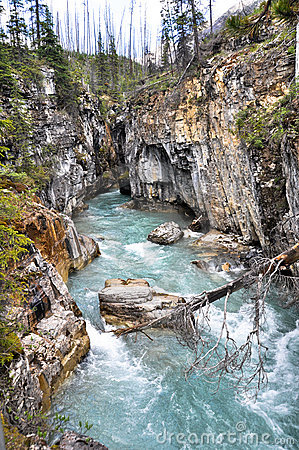 Marble canyon at Kootenay National Park (Canada)