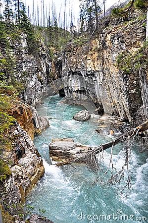 Marble canyon at Kootenay National Park (Canada)