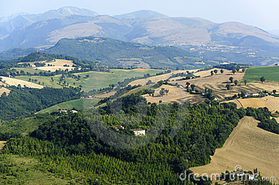 Marches, Landscape At Summer Royalty Free Stock Image - Image: 23520746