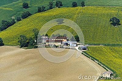 Marches, landscape at summer, farm
