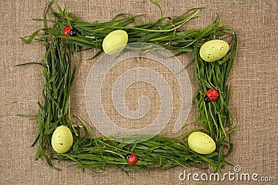 Marco de la hierba con los huevos y los lady-bugs