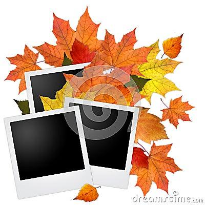 Marco en blanco de la foto con las hojas de otoño