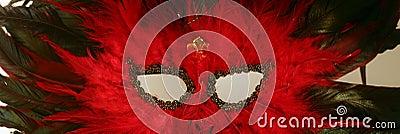 Mardi gras mask (feathered)