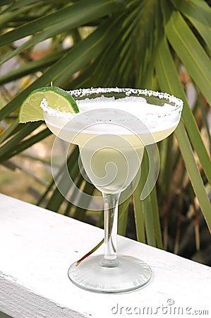 Margarita lime kawałek