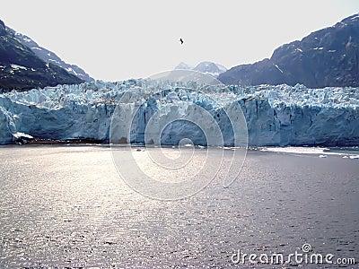 Margerie Glacier - Galcier Bay