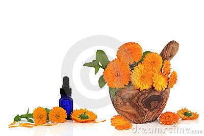 Marigold Flower Essence