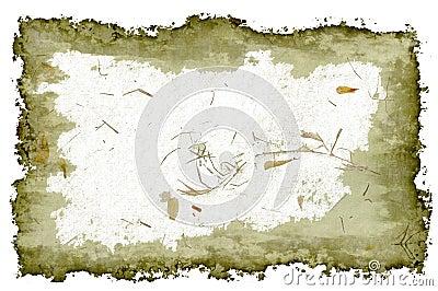 Marigold petal grunge frame