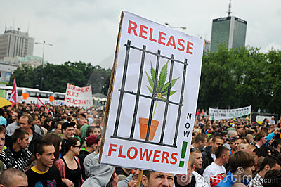 Marijuana protest Editorial Image