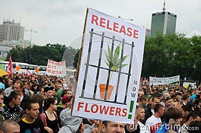 Marijuana protest Editorial Image
